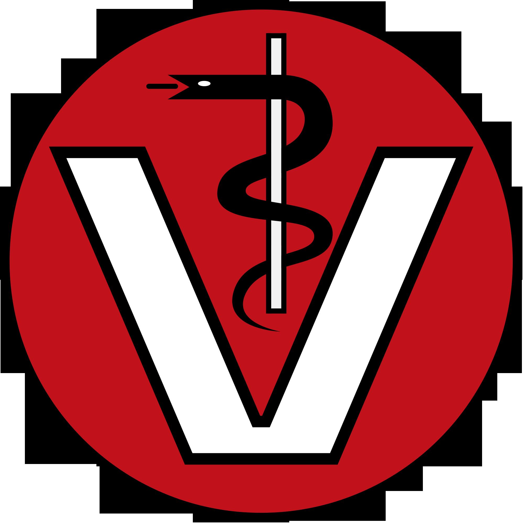 VETBridge - Empathische Veterinärmedizin - Dr. Ina Hipp - Tierarzt-Vet-Logo